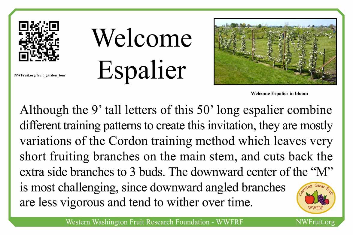 Welcome Espalier